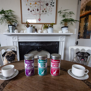 Barkjeeling - the finest herbal tea for dogs