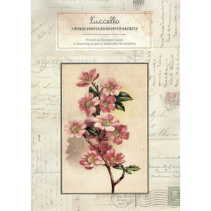 Vintage Postcard Scented Sachets - Pink Dogwood Postcard - Luccello - Stitches from the Bush