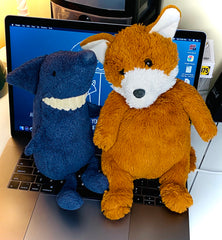 Image of the Shark and Fox that inspired the Shark & Fox Co. brand.