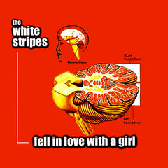 White Stripes - Fell In Love With A Girl