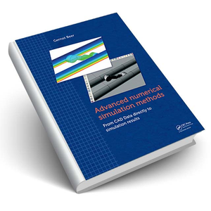 Advanced Numerical Simulation Methods