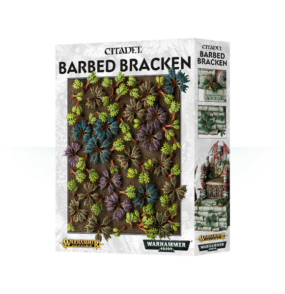 Barbed Bracken (64-52) (CA)