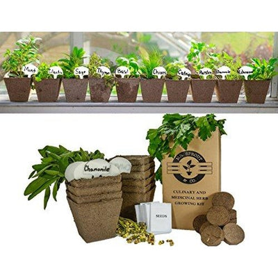 DIY Gardening Kit: Complete Medicinal and Culinary Herb Garden Kit
