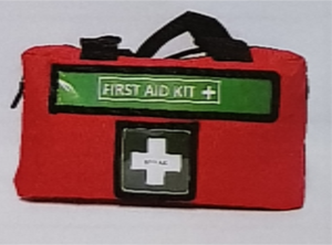 First Aid Kit-Workplace First Aid Kit in a Bag