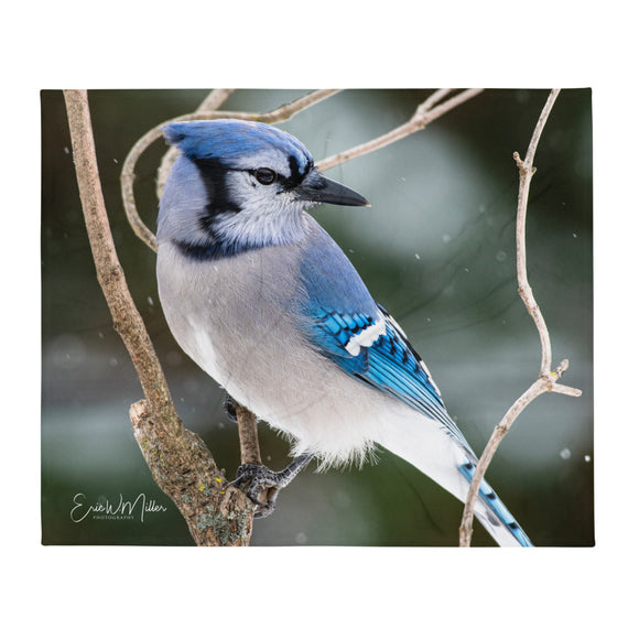 Blue jay_001 Throw Blanket