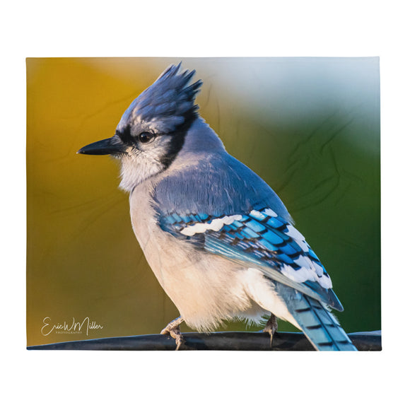 Blue Jay_008 Throw Blanket