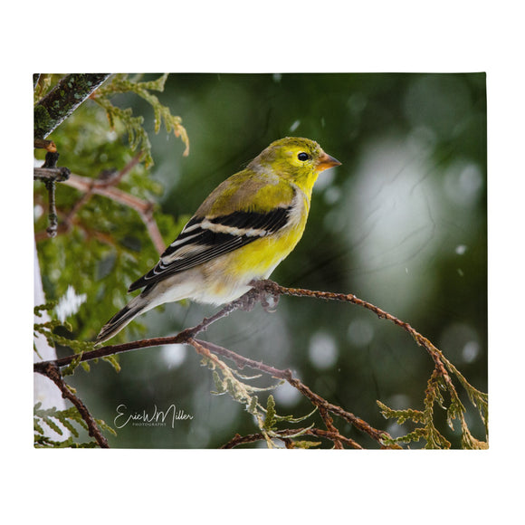 American Goldfinch_001 Throw Blanket
