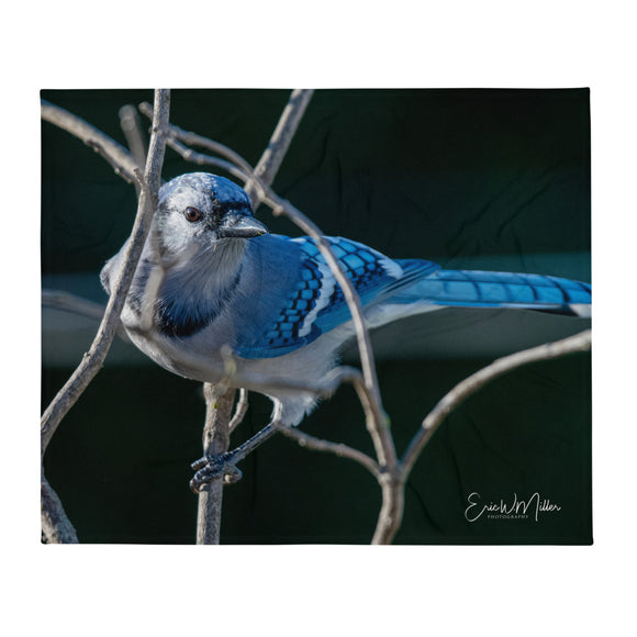 Blue Jay_009 Throw Blanket