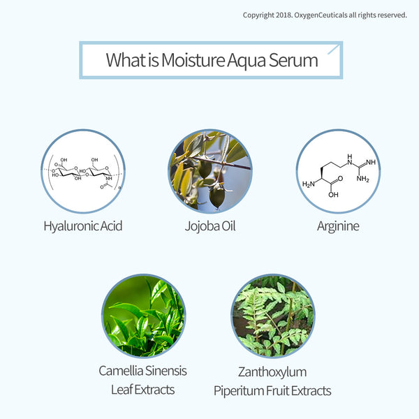 Face Serum I Moisture Aqua Serum I Korean Facial Moisturizer |A deeply hydrating serum that revitalizes and plumps the skin while reducing the appearance of wrinkles