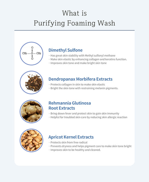 OxygenCeuticals Purifying Foaming Wash, 100 ml/3.38 oz, Foam face cleanser, For daily face washing, Normal to oily skin.
