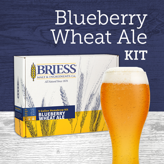 Better Brewing Blueberry Wheat Ale