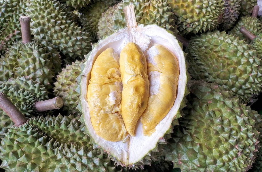 It's Durian Season Again