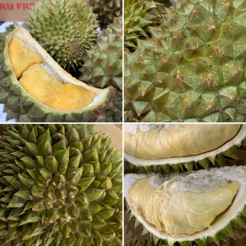 Tropical Primary Products' fresh HEW1 and other variety durian