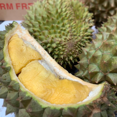 Tropical Primary Products' HEW1 durian