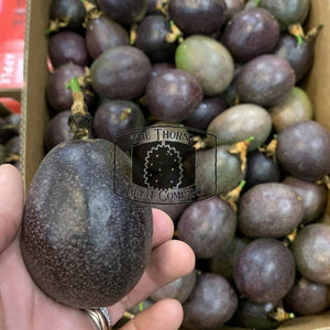 [PRE-ORDER] Passionfruit. Markisa. Passiflora edulis - The Thorny Fruit Co