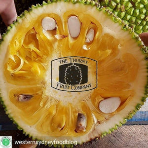 [PRE-PACKED] 500g Fresh Jackfruit. Nangka. Langka. Artocarpus heterophyllus - The Thorny Fruit Co