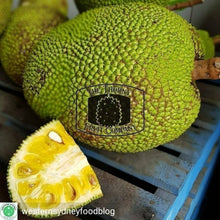Load image into Gallery viewer, [PRE-PACKED] 500g Fresh Jackfruit. Nangka. Langka. Artocarpus heterophyllus - The Thorny Fruit Co