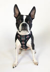 NCAA OHIO STATE | OSU Logo Reversible Pet Harness