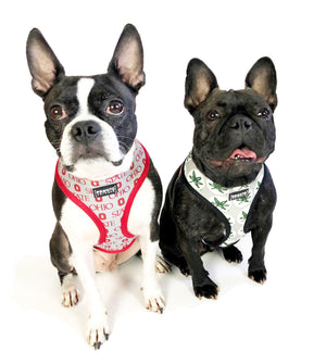 NCAA OHIO STATE | Buckeyes Football Stripe Reversible Pet Harness