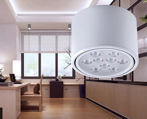 Adjustable Surface Mount LED Down Light SKU# LIG0065