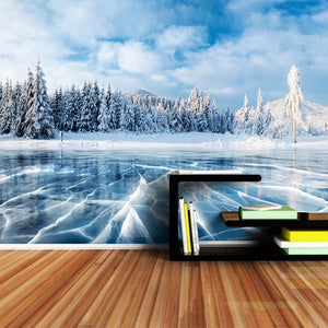3D Wallpaper Winter Frozen Lake Waterproof SKU# WAL0075