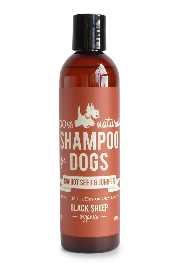 Black Sheep Organics Carrotseed & Juniper Shampoo
