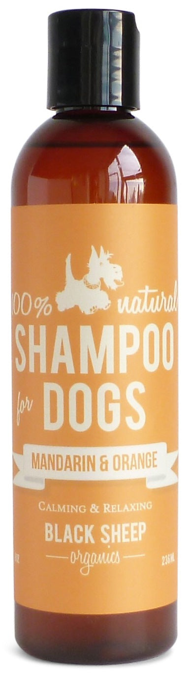 Black Sheep Organics Mandarin & Orange Shampoo