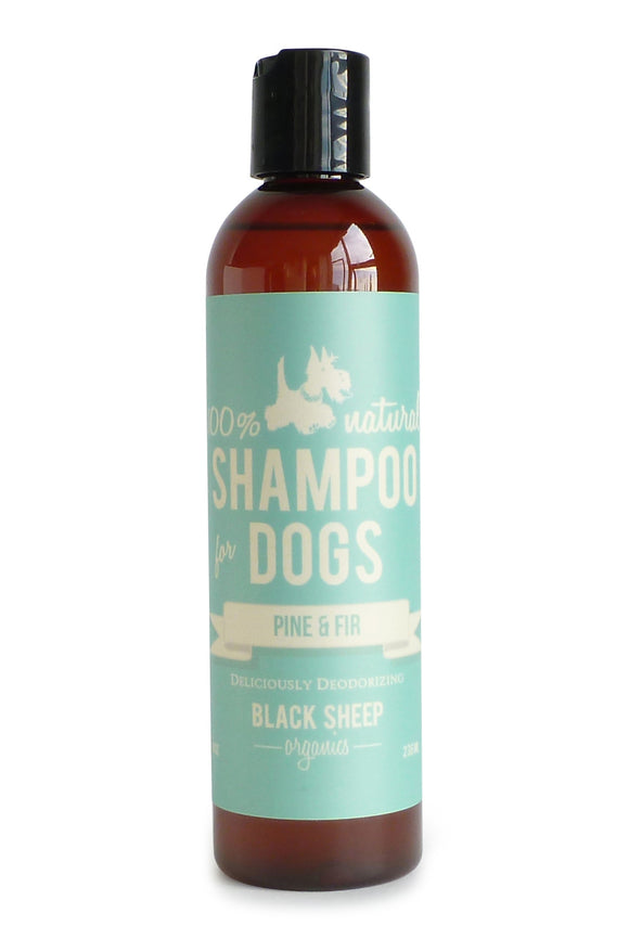 Black Sheep Organics Pine & Fir Shampoo