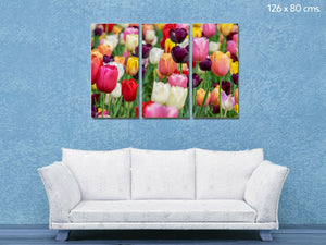 Cuadro Tulipanes en Lienzo Canvas Multipanel