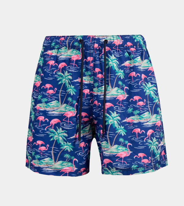 Vacay Swim Shorts (Drifting)
