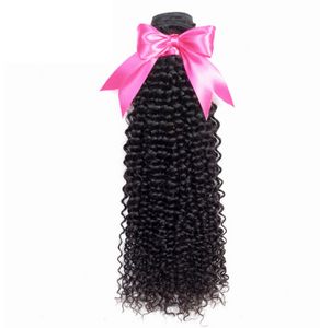 Kinky Curly Virgin Hair Extension 100% Human Hair Bundles Malaysian Hair Weaves Can Buy 3 or 4 Bundles Nature Color