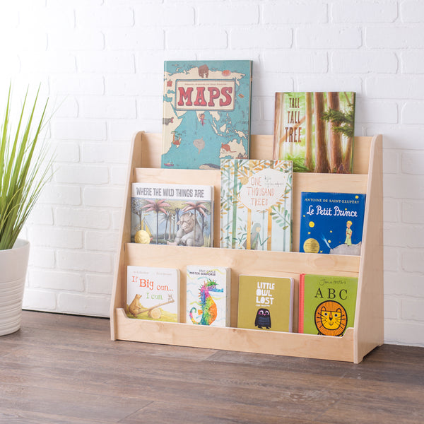 Lexico Book Display Shelf