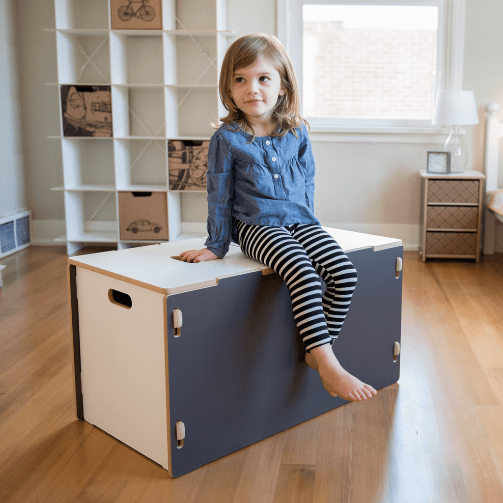 Sturdy Grey Kids Modern Toy Box Sprout