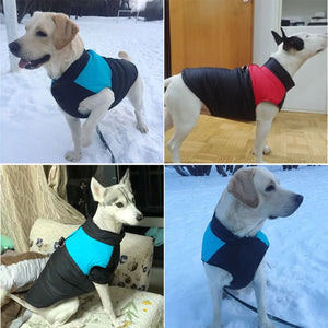 Warm Winter Vest for Dogs