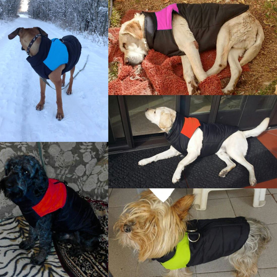 Waterproof Dog Vest Jacket