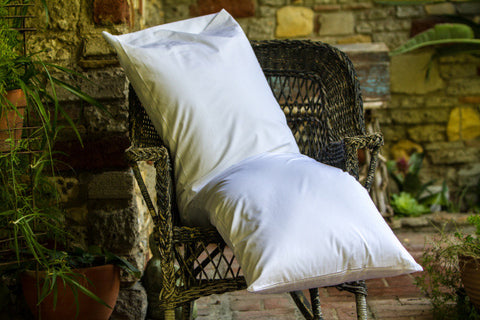 Organic Cotton Pillow Cases