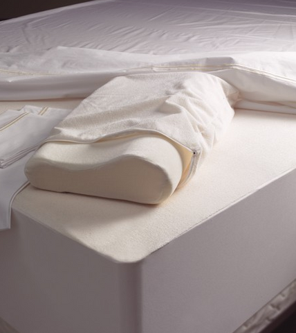Conventional and Memory Foam Pillowcases
