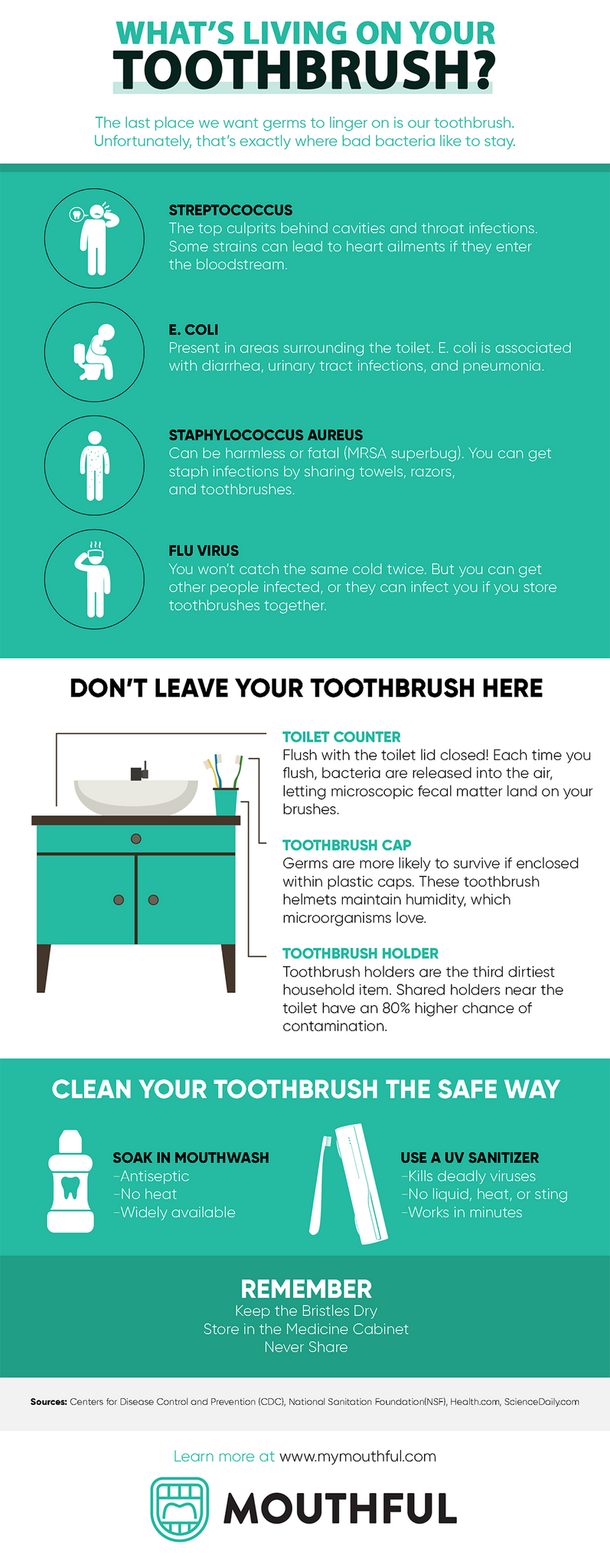 Infographic germs on toothbrush