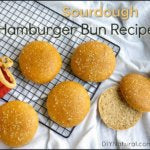 Recipe for Homemade Sourdough Hamburger Buns