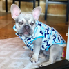 Cherie Camo Jacket | 3 Colors - Playful Pooch Boutique - Online Dog Pet Store