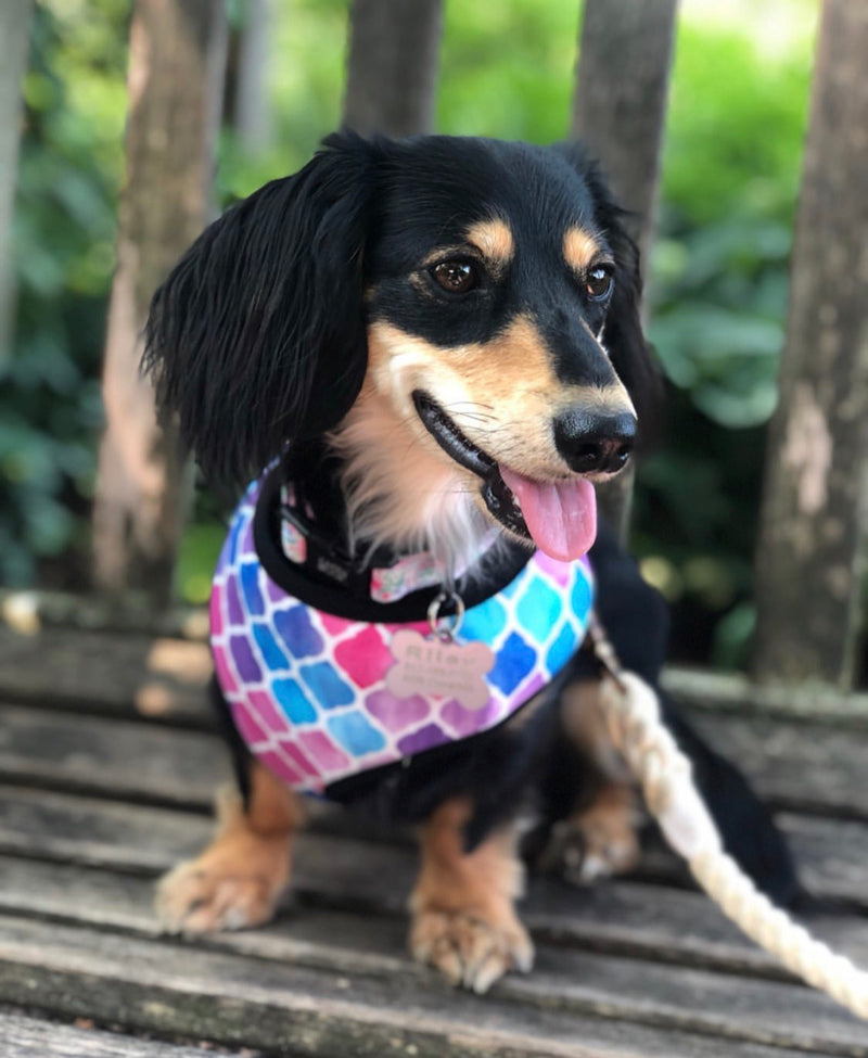 LUXE Princess Pink Harness - Playful Pooch Boutique - Online Dog Pet Store