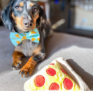 LUXE Pizza Party Design - Playful Pooch Boutique - Online Dog Pet Store