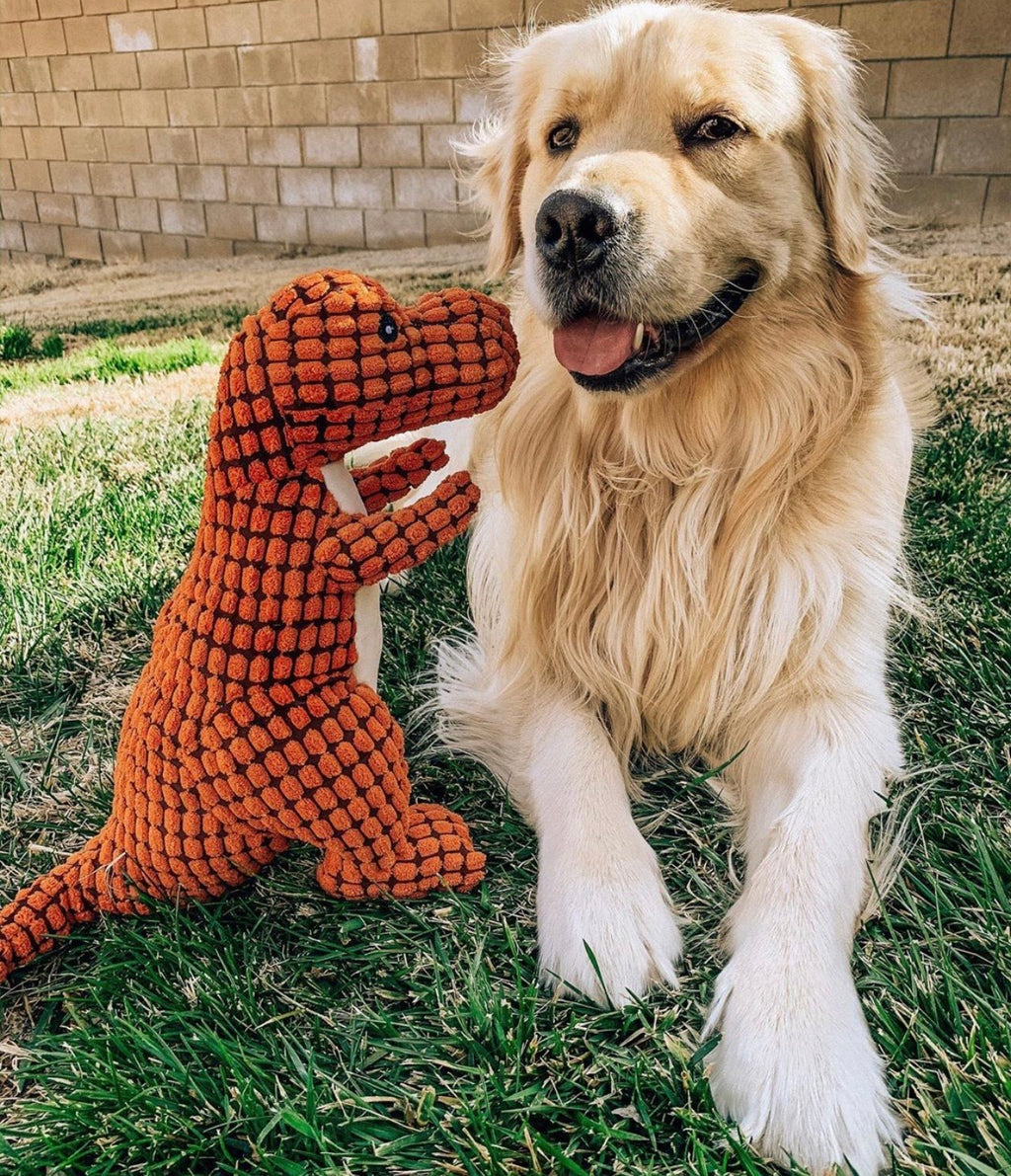 Dash Dino Plush Toy | 3 Colors - Playful Pooch Boutique - Online Dog Pet Store
