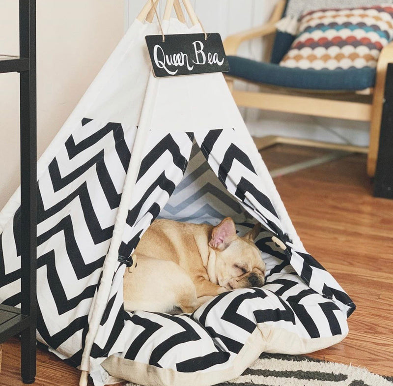 Tammy Teepee | Bed Included | 2 Colors - Playful Pooch Boutique - Online Dog Pet Store