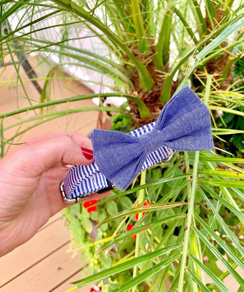 LUXE Nautical Stripe Design - Playful Pooch Boutique - Online Dog Pet Store