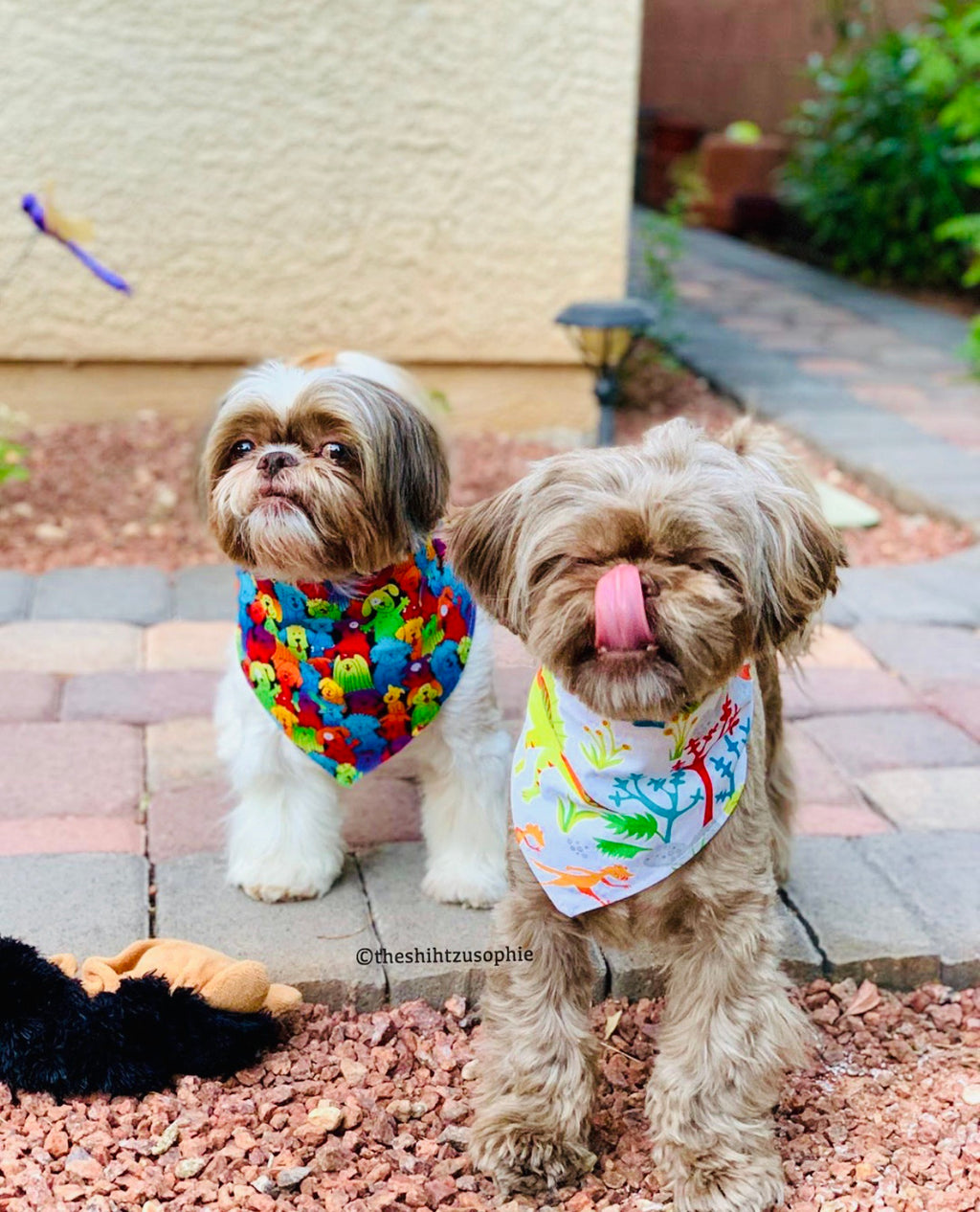 LUXE Pooch Party Bandana Set | 2 Pack - Playful Pooch Boutique - Online Dog Pet Store