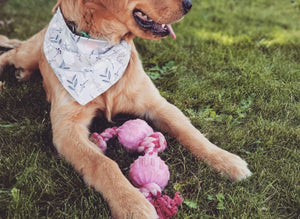LUXE Bambi Bandana Reversible Set | 2 Pack - Playful Pooch Boutique - Online Dog Pet Store
