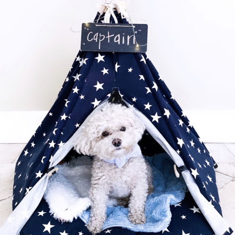 Galaxy Galore Teepee | Bed Included - Playful Pooch Boutique - Online Dog Pet Store