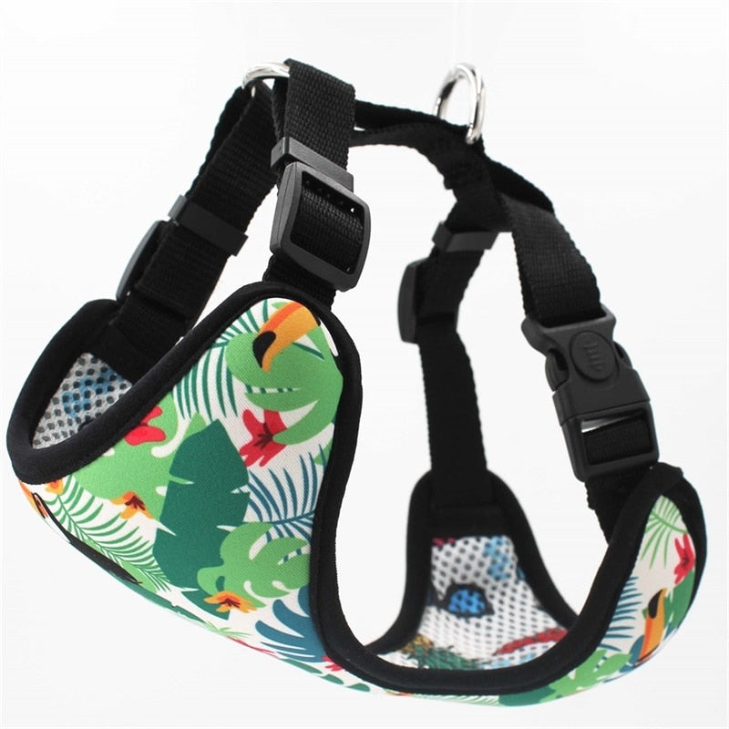 LUXE Jungle Jive Reversible Harness - Playful Pooch Boutique - Online Dog Pet Store