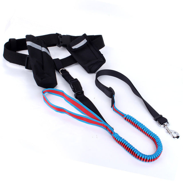 Winston Running - Waist Lead | 3 Colors - Playful Pooch Boutique - Online Dog Pet Store